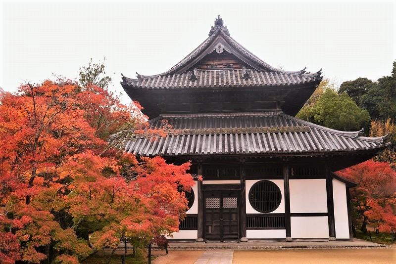 宝福寺13
