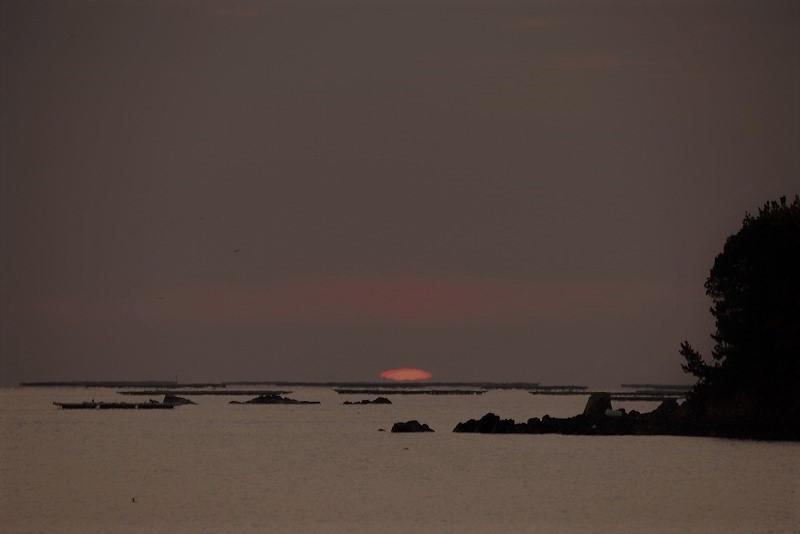 達磨太陽1