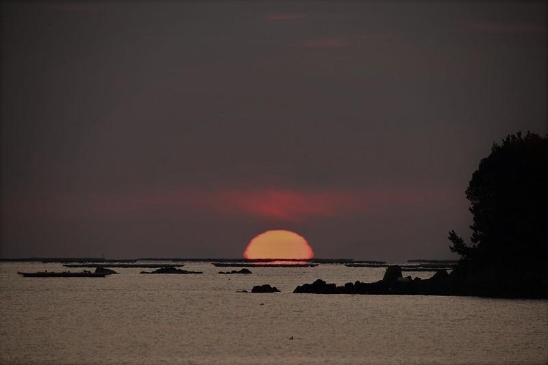 達磨太陽3