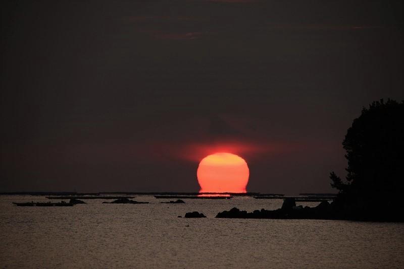 達磨太陽5