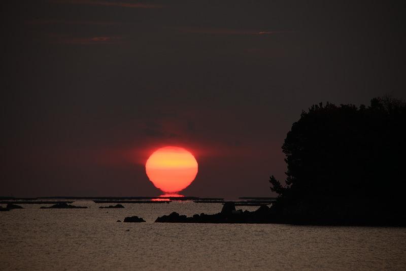 達磨太陽10