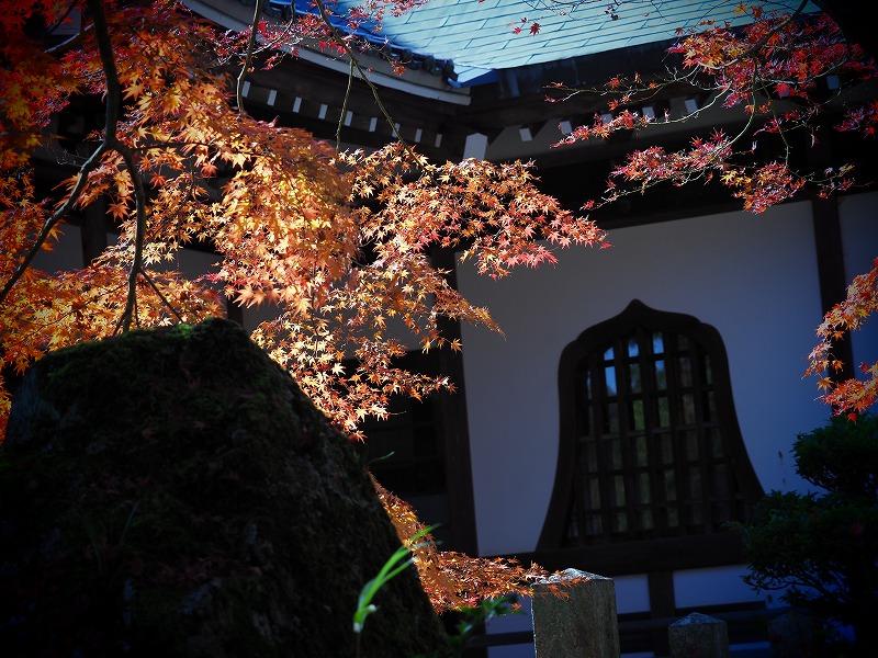 龍泉寺 の紅葉18