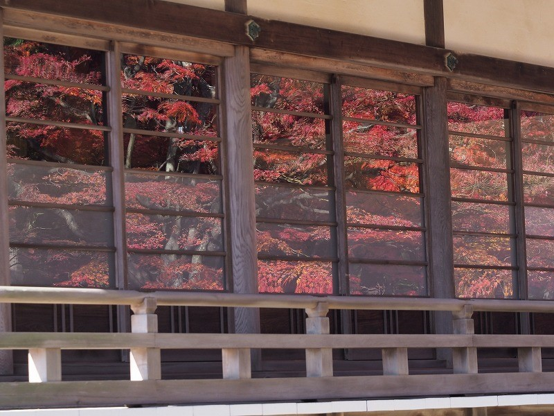 龍泉寺 の紅葉16