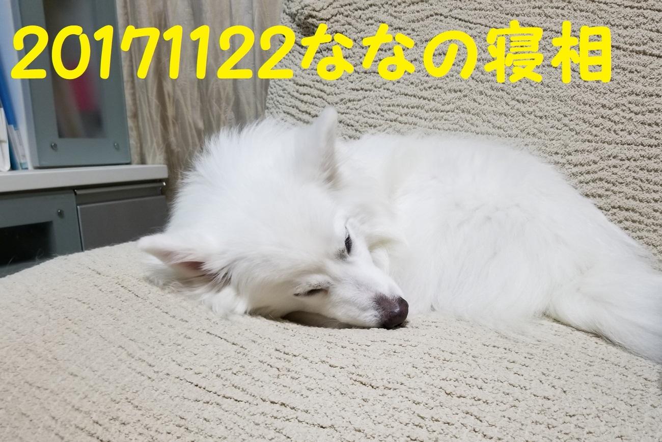 20171122_215404.jpg
