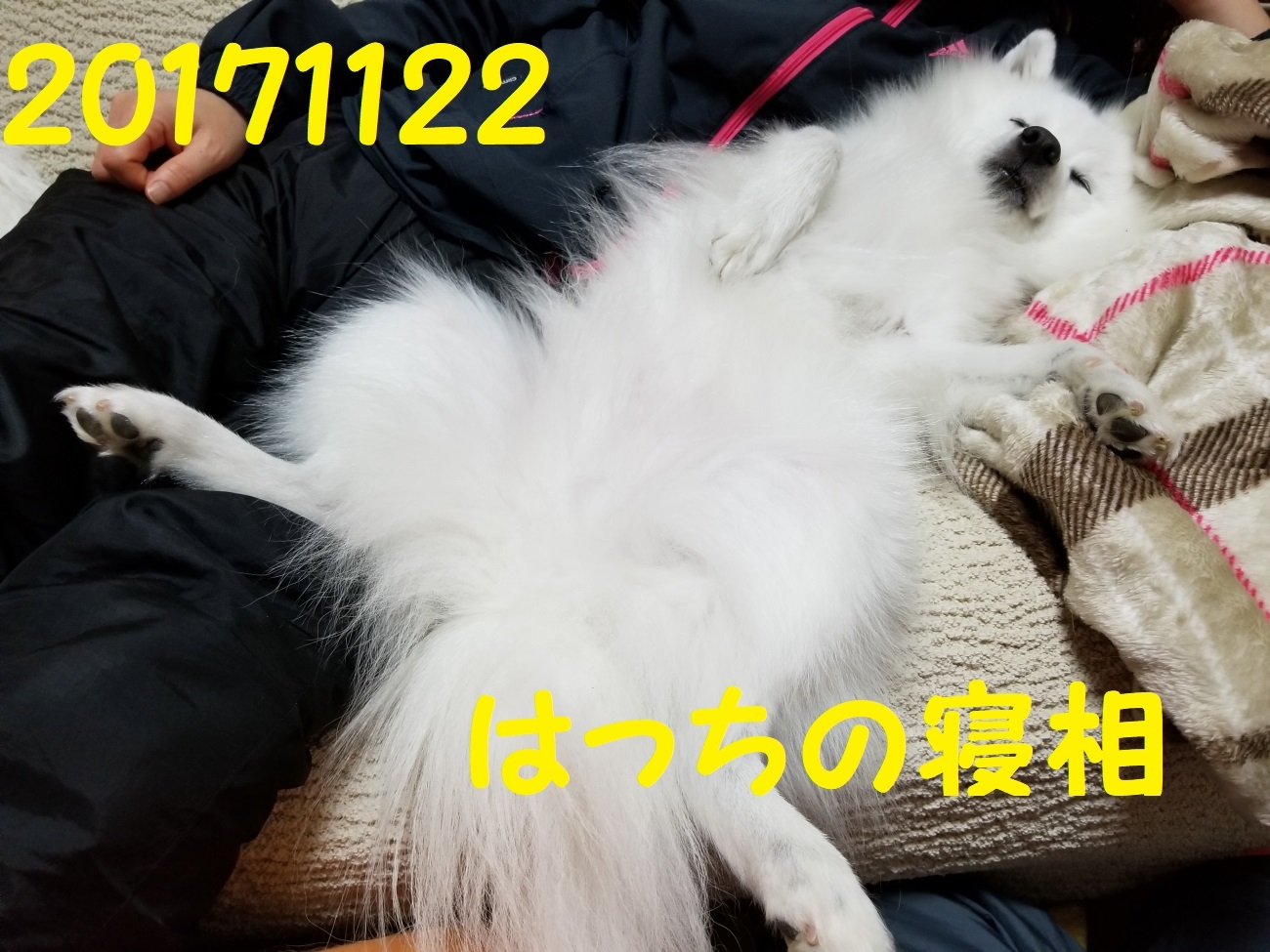 20171122_215445.jpg