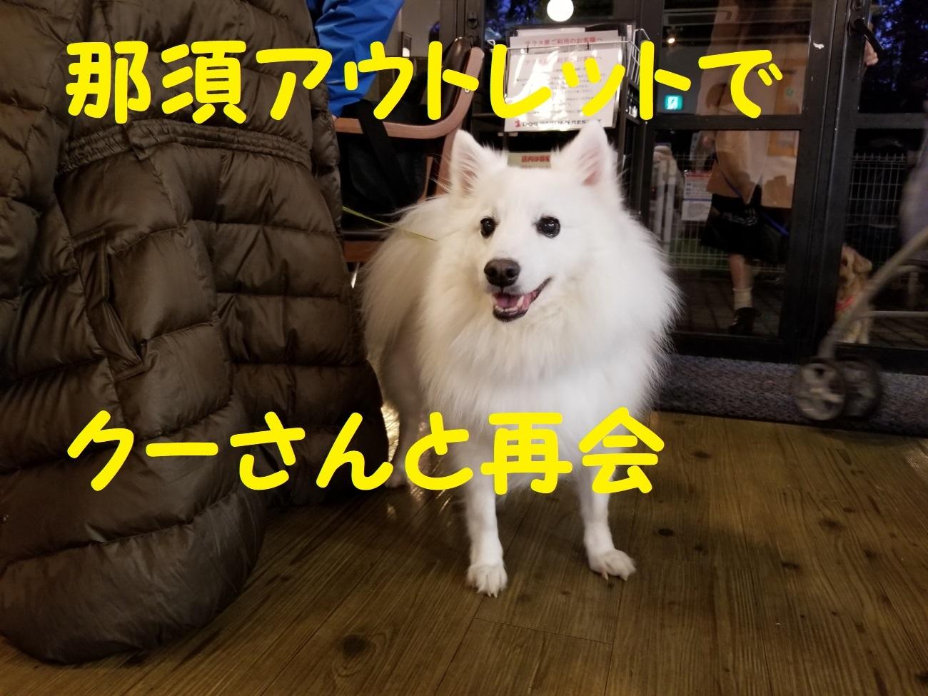 20171123_165848.jpg
