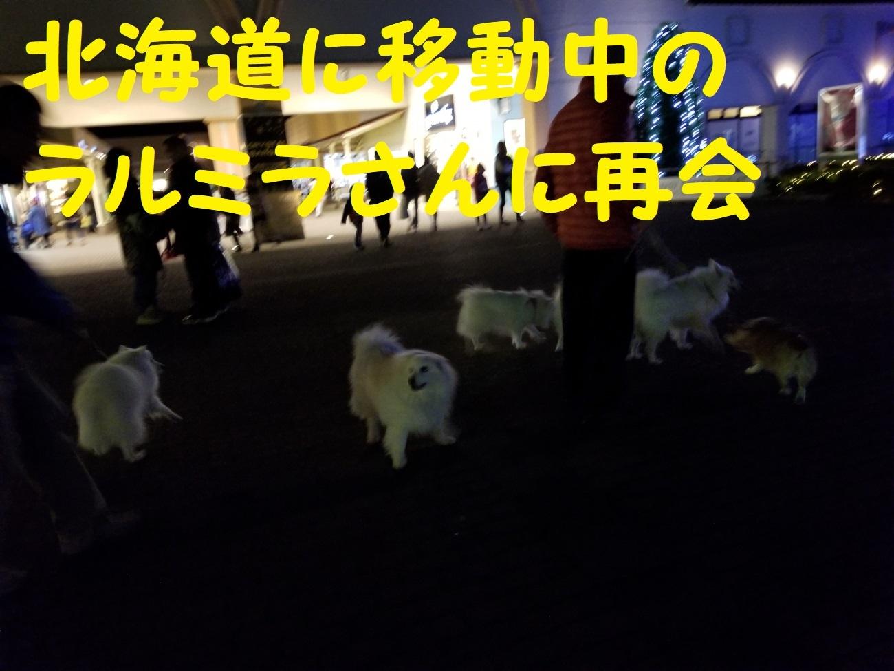 20171123_173846.jpg