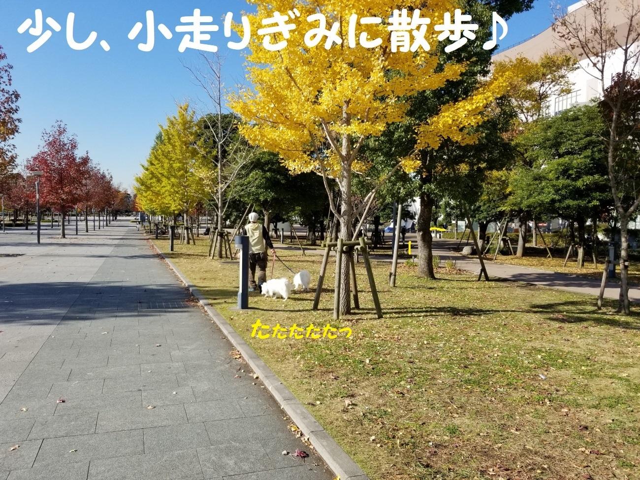 20171124_094117.jpg
