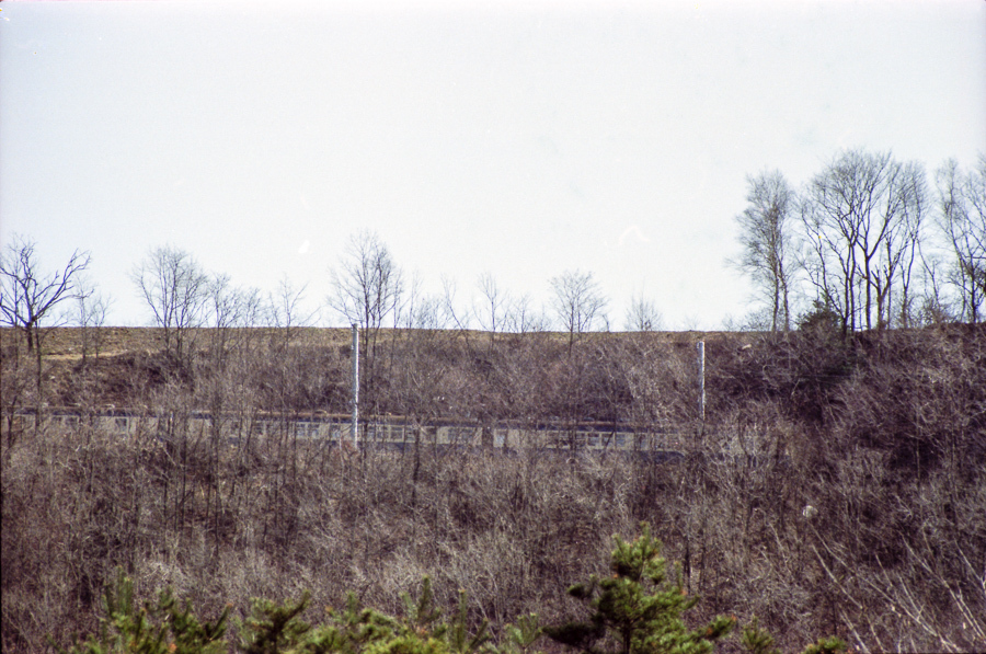 198304_0136.jpg