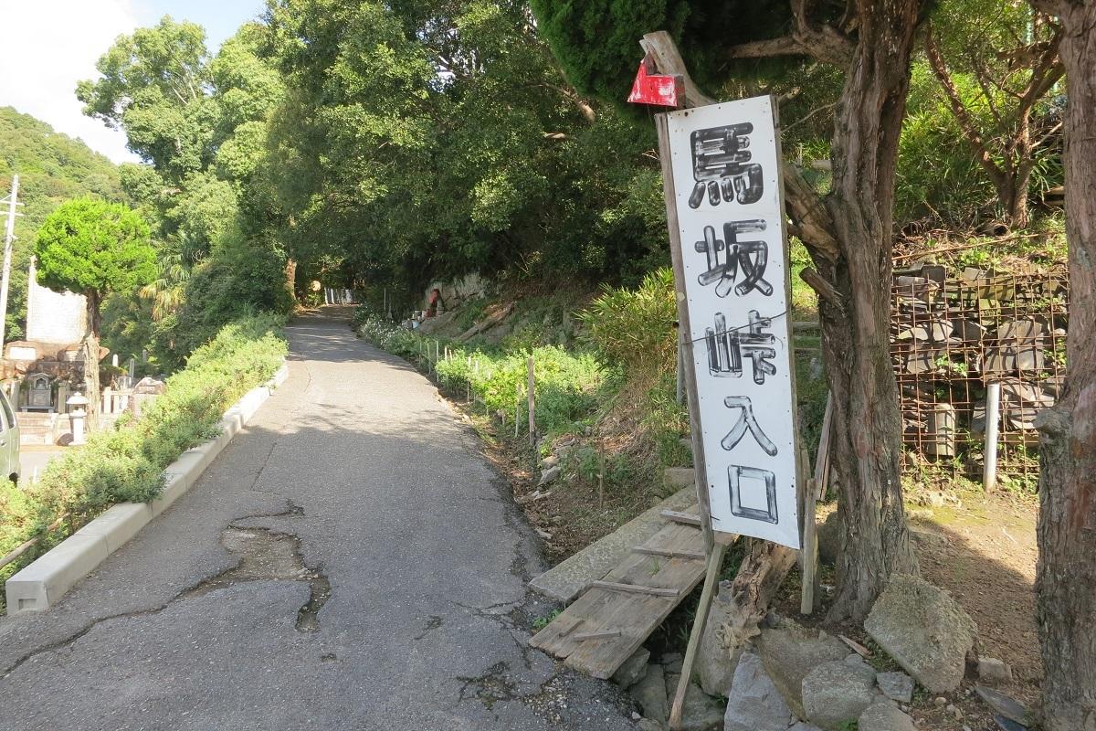 noji2.jpg