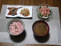11/23 夕食 まぐろのたたき丼、イカと里芋の煮物、切り干し大根、かいわれと桜エビのサラダ、豆腐とわかめの味噌汁