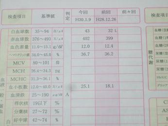 2/8 (1/9)健康診断結果 血液状態