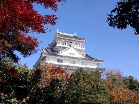 岐阜城の紅葉 1