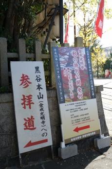 2017_kyoto_koyo_2.jpg
