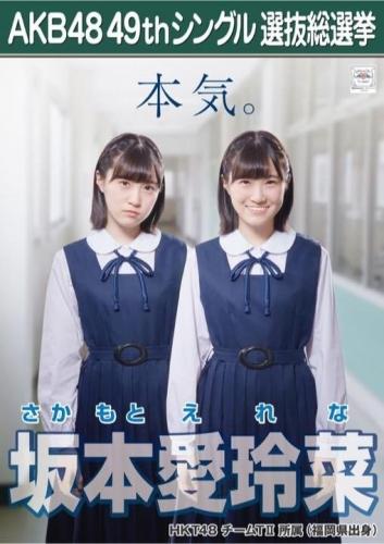 坂本愛玲菜_AKB48 49thシングル選抜総選挙ポスター画像