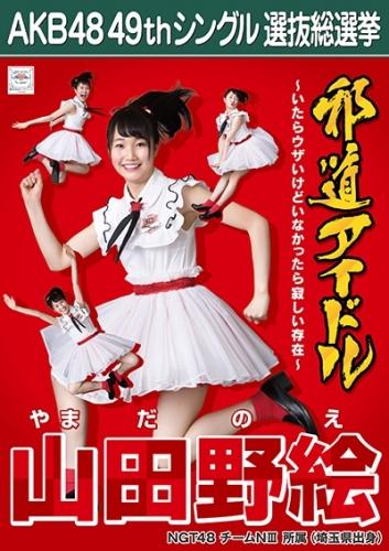 山田野絵_AKB48 49thシングル選抜総選挙ポスター画像