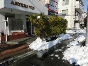 アステリVIP雪かき(2)
