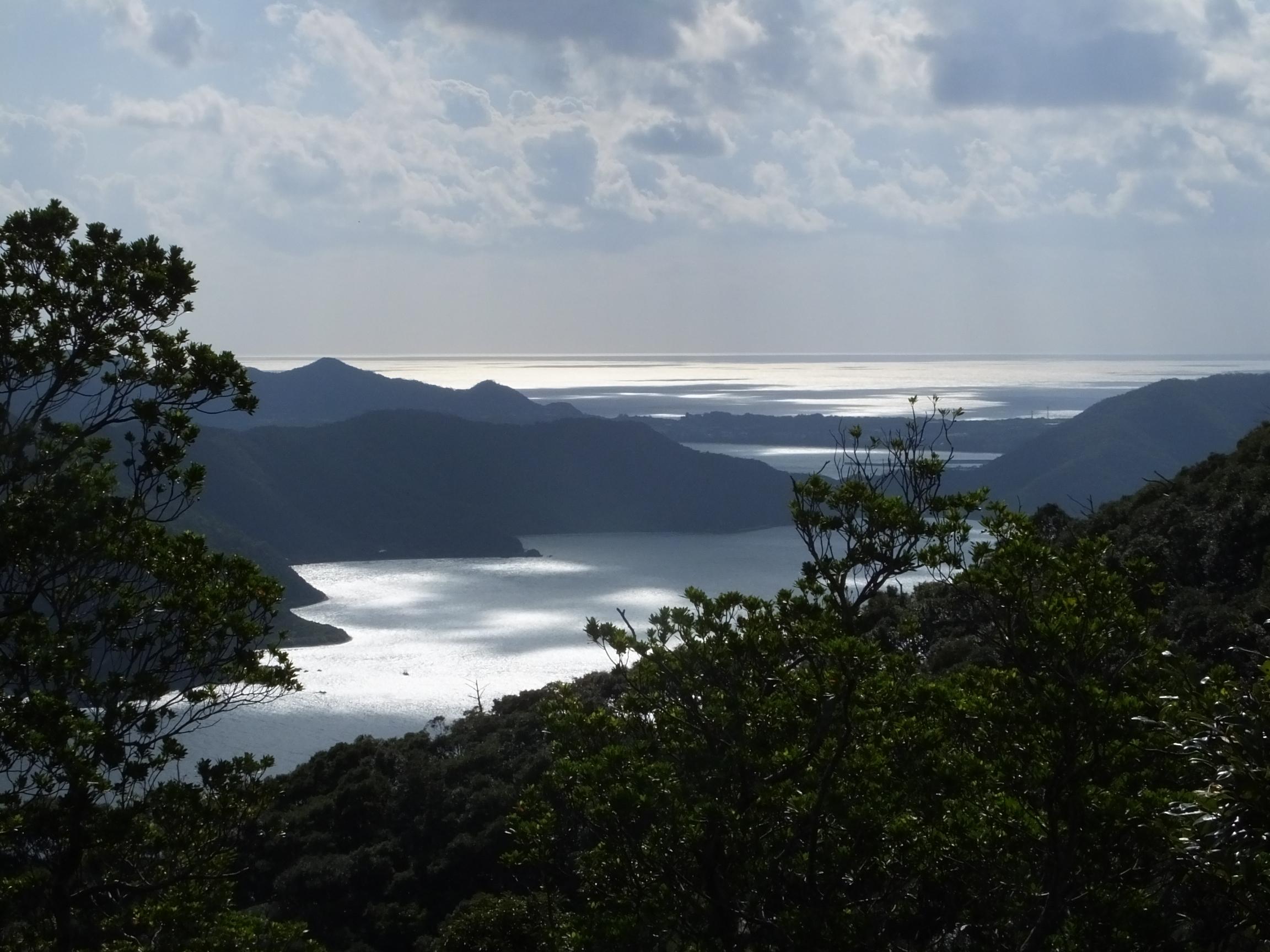 龍郷町と太平洋