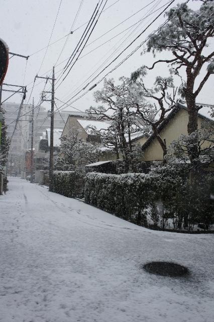 20180122大雪近所 ①