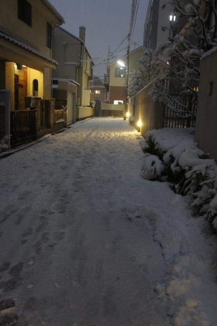 20180122大雪近所 ③