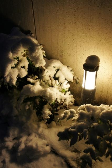 20180122大雪近所 ④