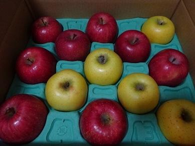 長野の林檎