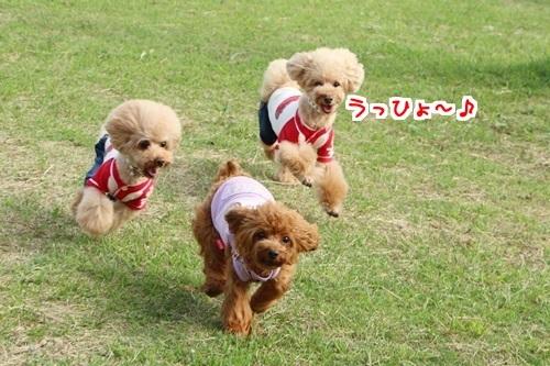 5楽しいみんな(あんライファミリー)