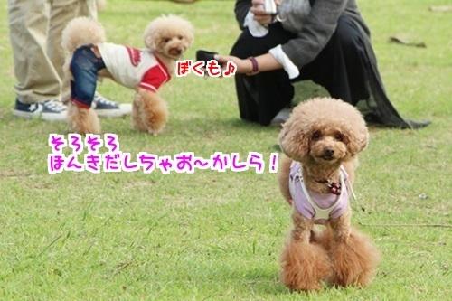 9あんあん(あんライファミリー)