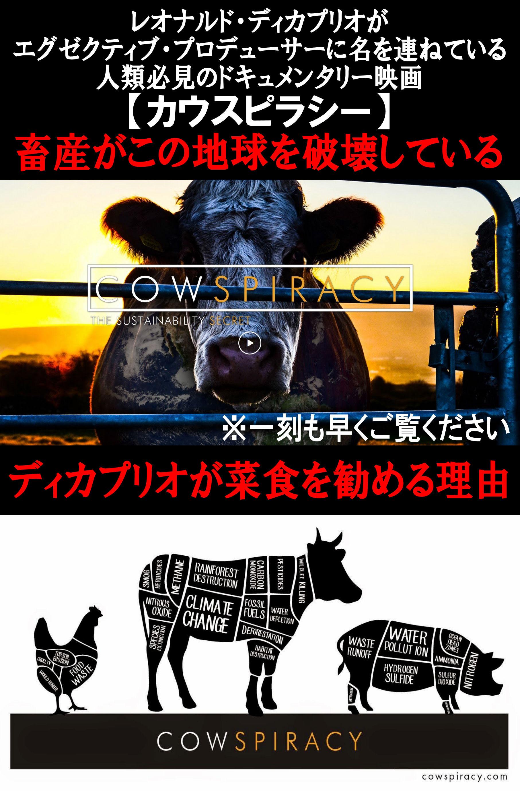 COWSPIRACY1.jpg