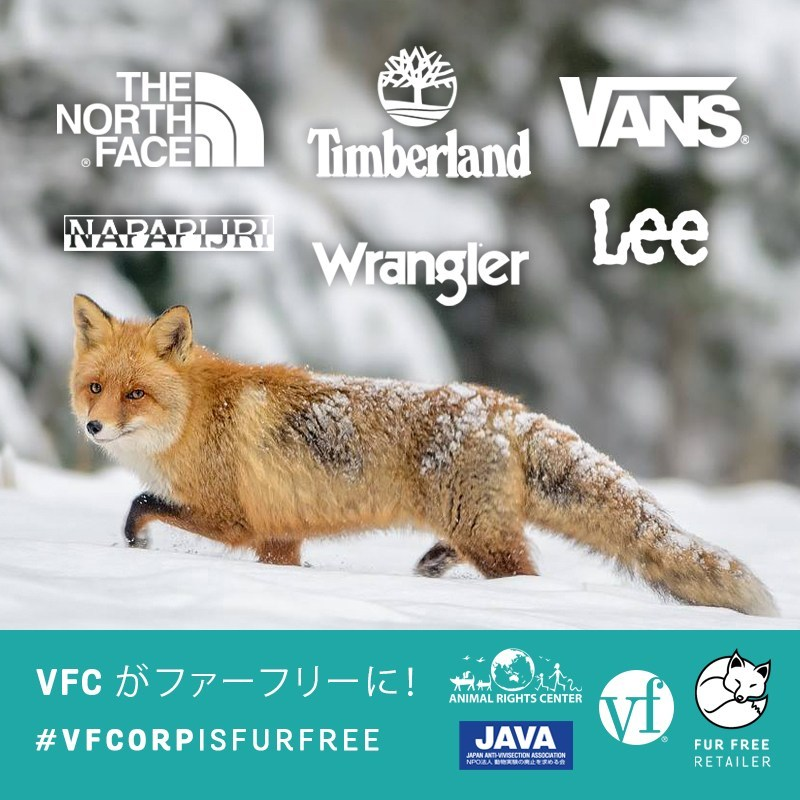 JAPAN_NEW_VFC-IS-FUR-FREE.jpg