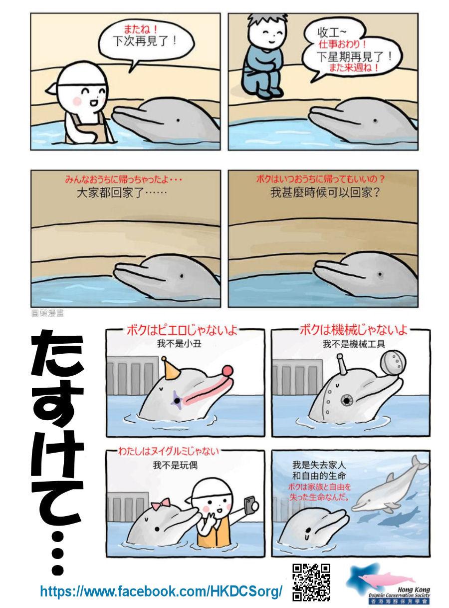 chinairukaCHIRASHI.jpg