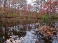 三居沢源流の池