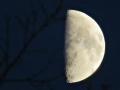 山から見た月