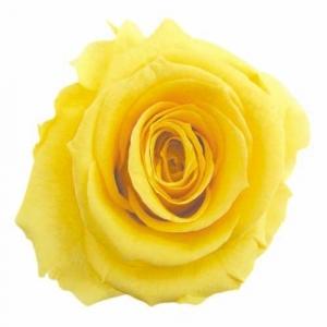 黄色のリース1