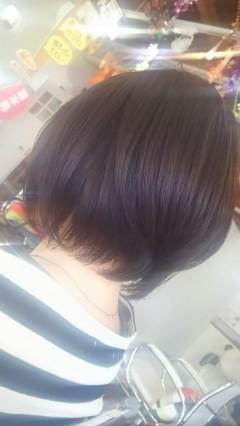 DSC_0127_1.jpg