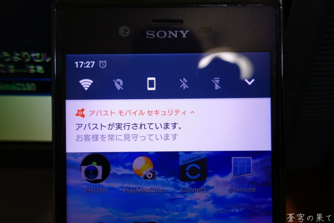 LRG_DSC00737_1.jpg
