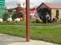 Old MacDonald's Farm&Fun Park