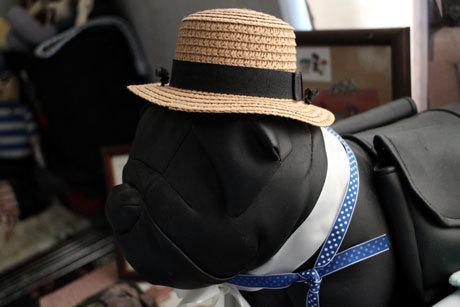 麦藁帽子っていうんだよ