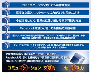 Facebookで稼ぐ方法【FIP】上位版アドバンス