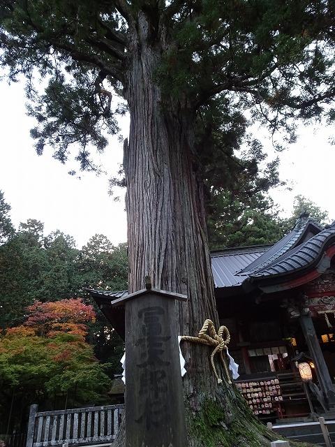 北口本宮富士浅間神社3
