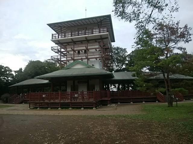 生田緑地 桝形山展望台