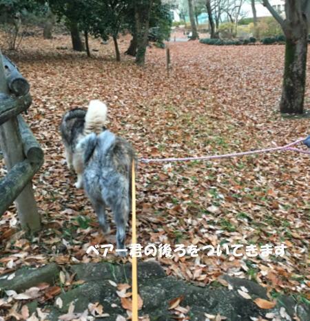 2017-12-09_3.jpg