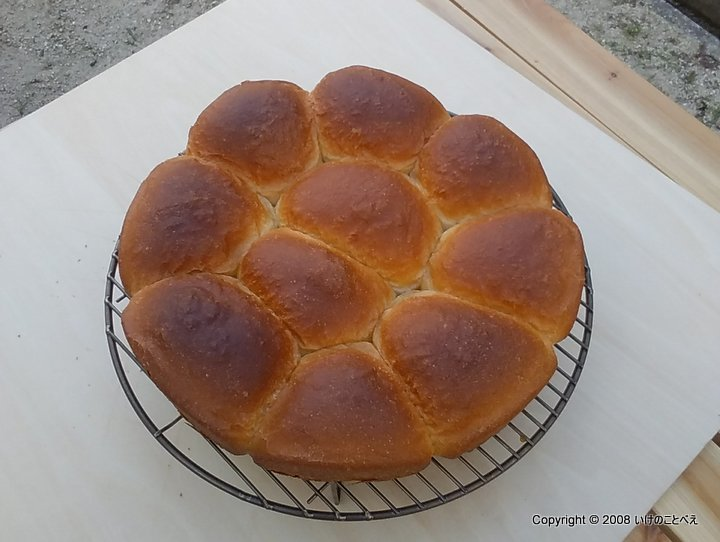 キャンプ場で初めて焼くダッチオーブンパン