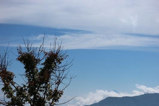 富士見パ1