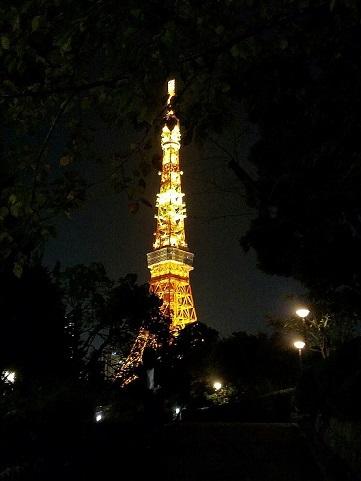 ステラガーデン プロモ 東京タワー (4)