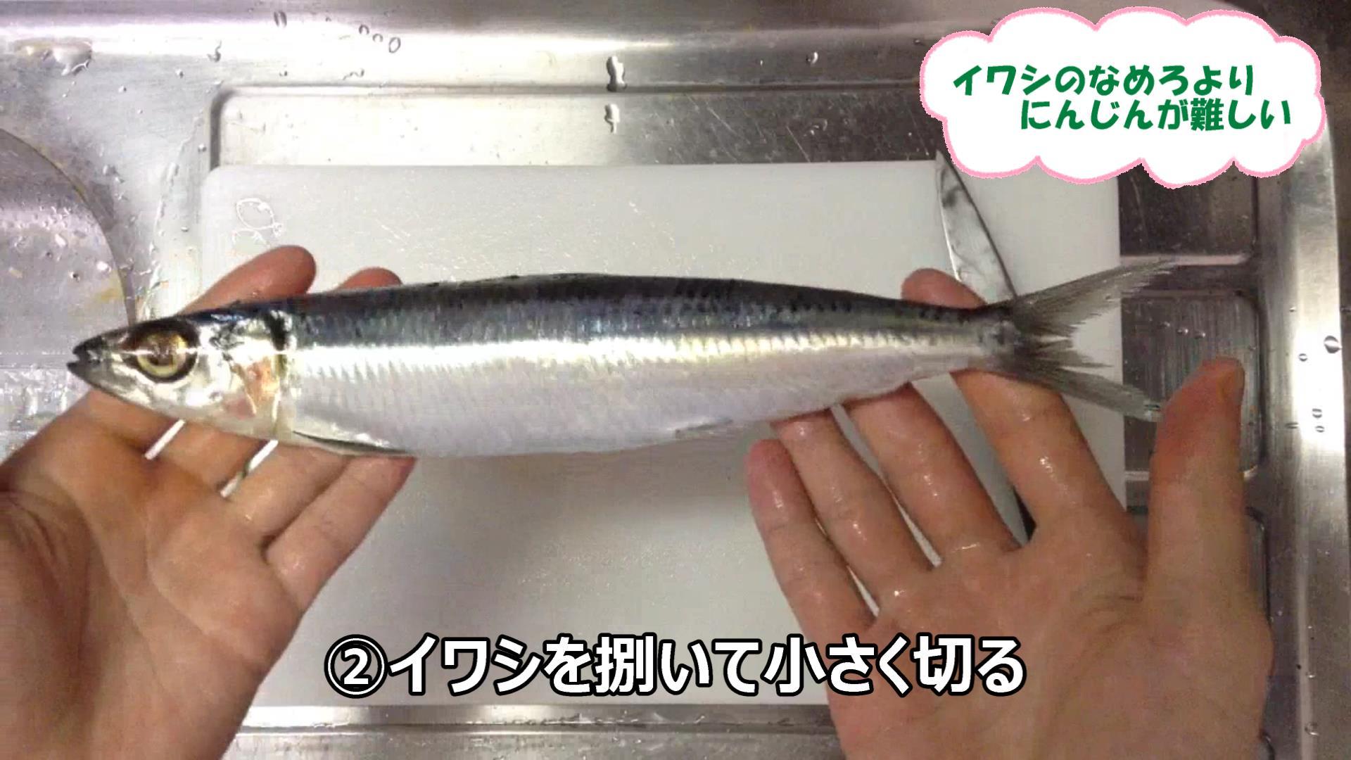 なめろおろし(9)