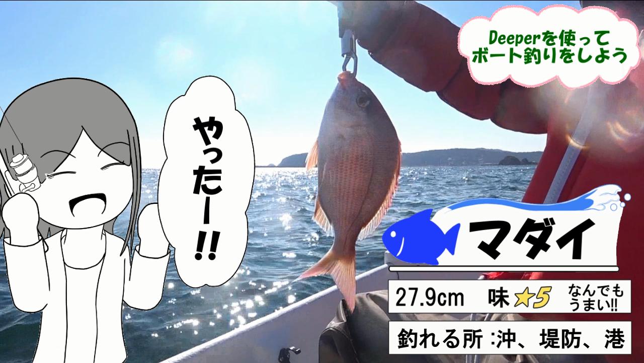 門川の釣り サムネ