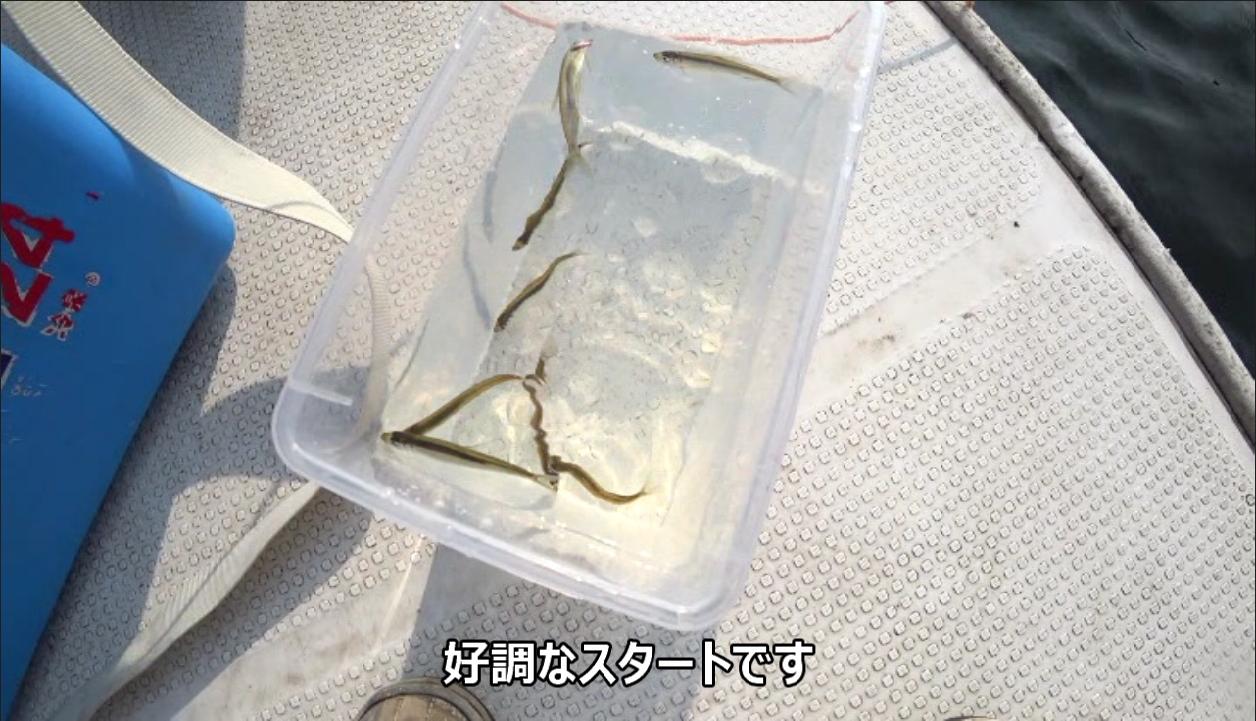 ワカサギ釣り 記事 (7)