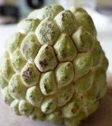 20140924_sugar-apple_04-thumb-296xauto-1466[1]