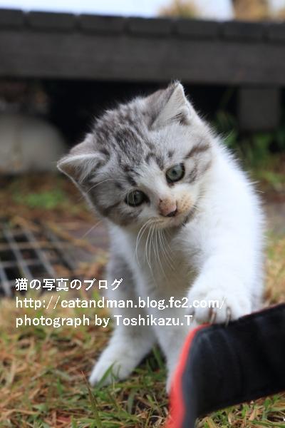 IMG_2224s.jpg